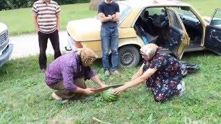 Бабушки косят арбуз прикол