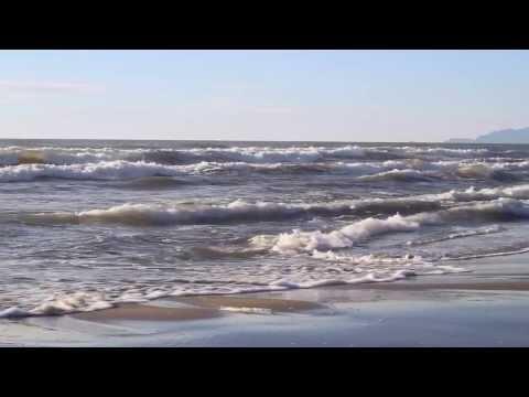 Sea shore - Video and Sound of the sea