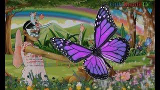 Titli hun main titli - Butterfly Nursery Rhyme in Urdu/Hindi