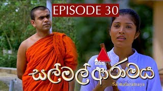 සල් මල් ආරාමය | Sal Mal Aramaya | Episode 30 | Sirasa TV Thumbnail