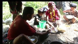 Cooking organic fish found in village river ll Traditional lifestyle