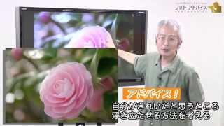 一眼レフ上達講座 プロが教える花撮影 詳しくはこちら http://photo-adv...