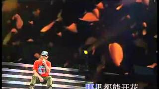 刀郎2011北京演唱會_黃玫瑰