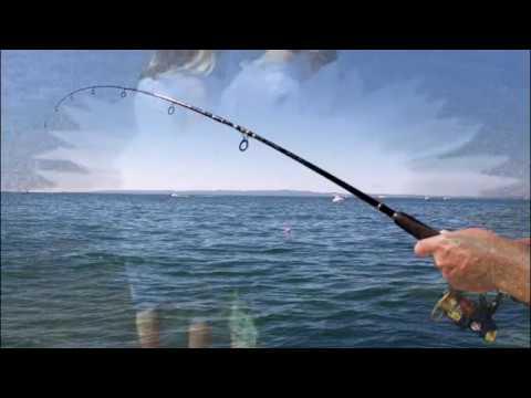 Смотреть видео Рыбак на Волге, сл  В  Шентала, муз  и исп  Евг  Никитин   бард, используются картинки Св  Влади
