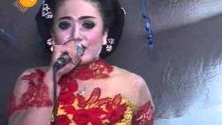 Tak Tunggu Balimu - Cs. Supra nada Live In Kedungsoko, Bumiaji Gondang Sragen
