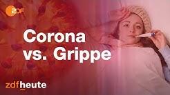 Coronavirus, Grippe oder Erkältung?   Corona kompakt vom 16.03.2020