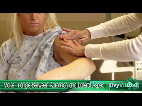 Intramuscular Injection Site: Deltoid ~ivyVILOs~(Ivy Tech Community College, School of Nursing)