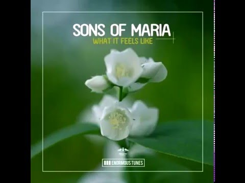 Sons Of Maria - What It Feels Like (Original Mix)