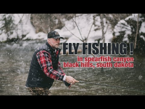 Fly Fishing In Spearfish Canyon In The Black Hills Of South Dakota!