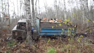 Газ 53 и Газ 66 в лесу...