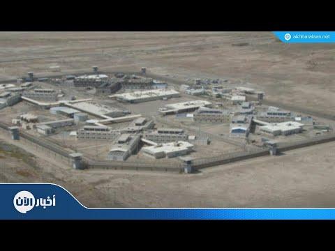 لماذا يحاول داعش مهاجمة سجن الناصرية جنوبي العراق؟  - نشر قبل 4 ساعة