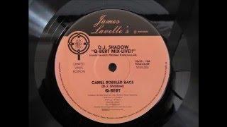 Dj Shadow - Q-bert Mix Live !!