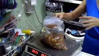 видео зоомагазин алматы