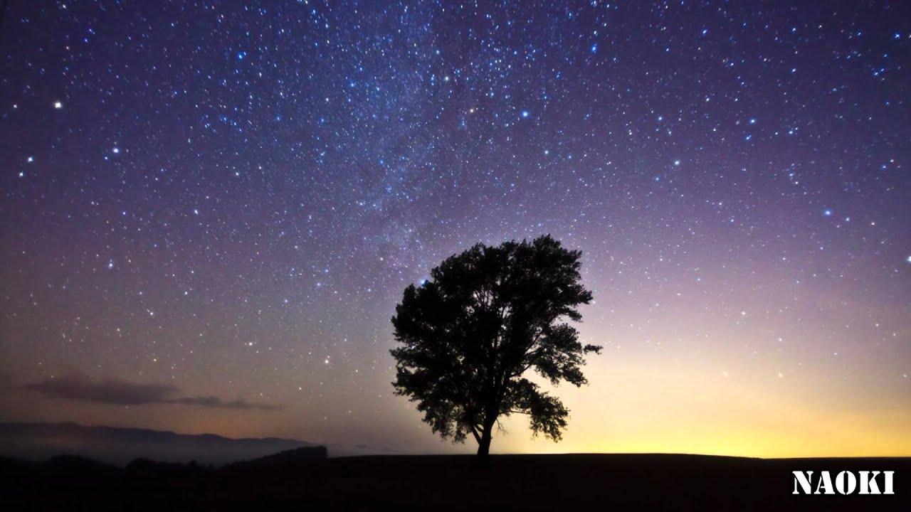 哲学の木の星景 Youtube