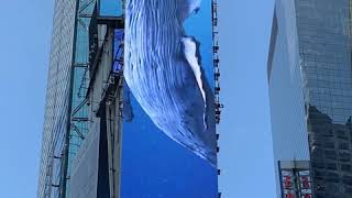 One Times Square - Whale