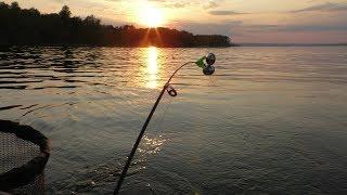 Рыбалка на красивом вечернем закате. Ловля леща на Волге. Ловля на кольцо