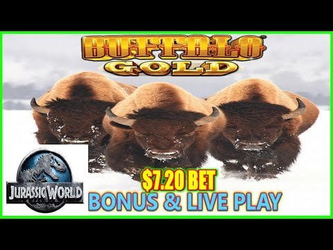★ LIVE PLAY & BONUS ★ - WONDER 4 BUFFALO GOLD - JURASSIC WORLD - SLOT MACHINE POKIES - - 동영상