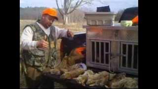 Rabbit Hunting In Va Part 2 2-28-13 Tri City Beagle Boyz