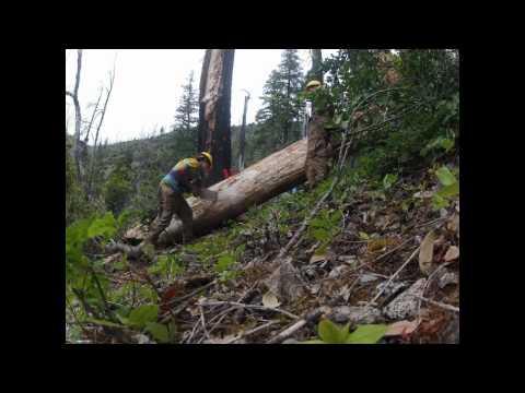 Restoring Trails in the Kalmiopsis Wilderness