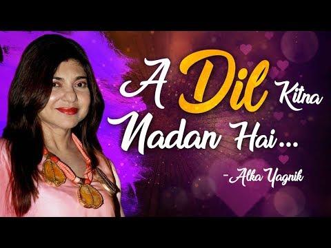 Dil Kitna Nadan Hai | Raja & Rajeshwari | Kumar Sanu - Alka Yagnik Hits