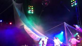 Moscow state circus.  July 2015