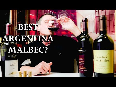 $20 Malbec Vs. $100 Malbec | Which Argentina Wine Should You Buy? | TWJ_Ep#23