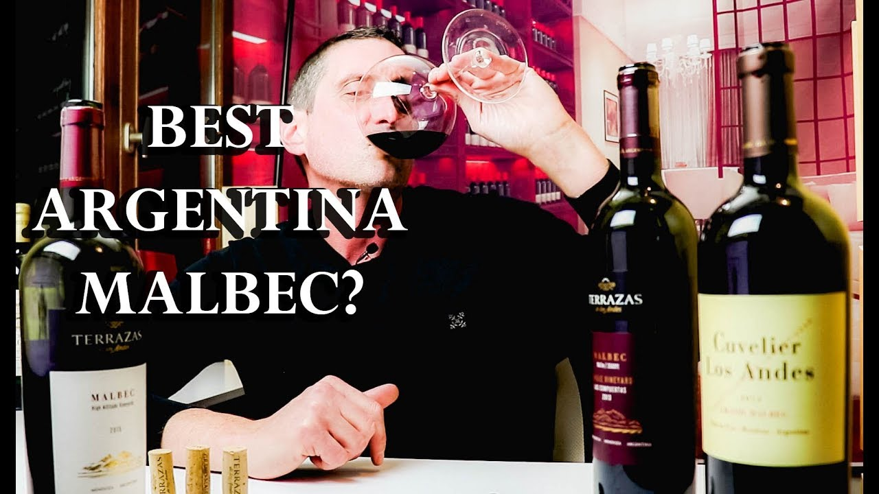 20 Malbec Vs 100 Malbec Which Argentina Wine Should You Buy Twj Ep 23