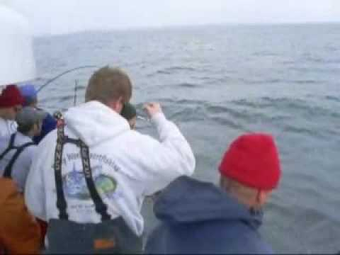 Celtic quest black fish madness youtube for Celtic quest fishing
