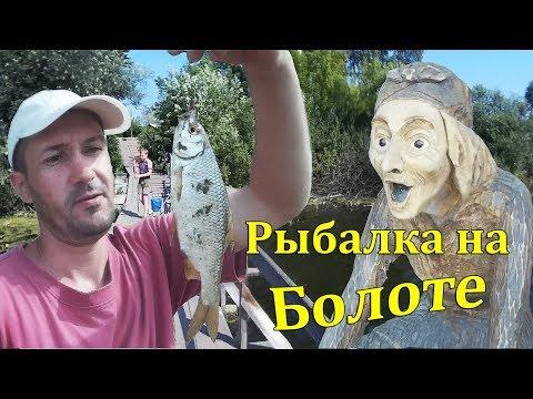 Такую рыбу я ещё не ловил! Рыбалка на болоте и речке Чумыш!