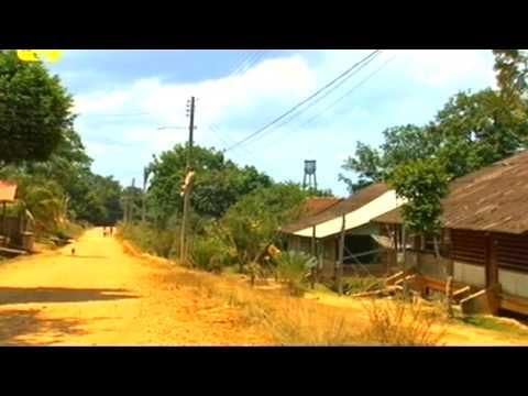 Fordlândia (2008)