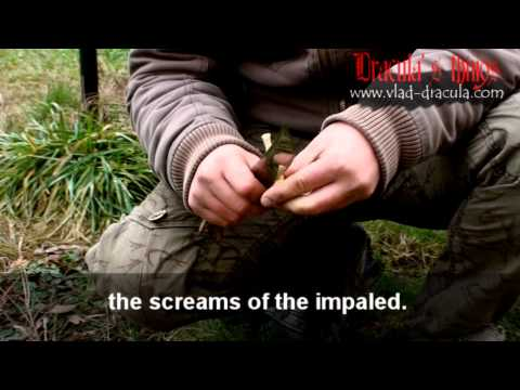 DRACULA - Forest of the Impaled - real images.wmv