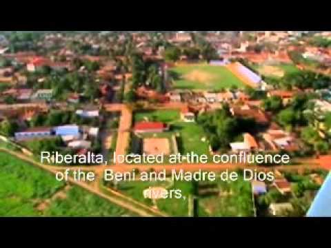 El proceso productivo de la Nuez Amazonica. (The Brazil Nut Productive Process)