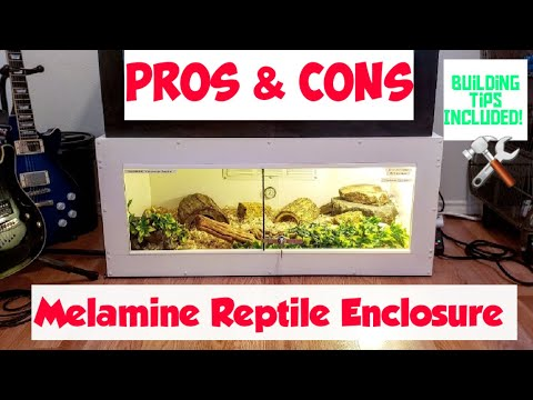 melamine-reptile-enclosure-(pros-and-cons)