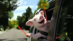 New Geico Little Piggy -  FREE $1,000 WalMart Card www.ATMfest.com
