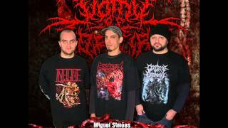 Vomit Of Torture -  Putrid Fever