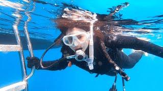 沖縄ダイビングセンター → https://www.okinawadc.com 沖縄と言えば美しい海!海を眺めるのも良いけれど、海の中を楽しむためにはダイビングライセンスが必須です。