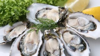 Fresh $1oysters, All You Can Eat Shrimp Best Bloody Mary's Seafood Sunday Palm Harbor Fl
