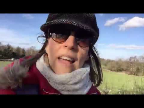 Slimming World FFF Day 17 A Long Walk With Mum