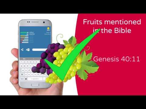 BibleUP! Bible Riddles - Apps on Google Play