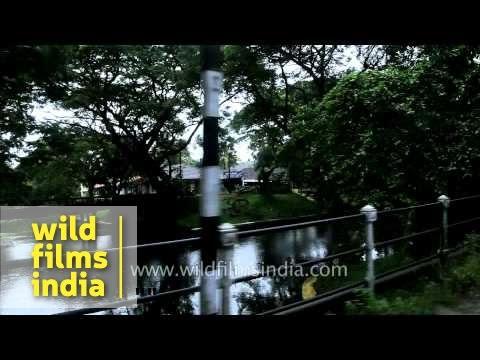 Auto ride in Alappuzha, Kerala
