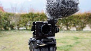 柴犬タロウと家族の日記。 新しいカメラの試し撮りです。 shibainu.