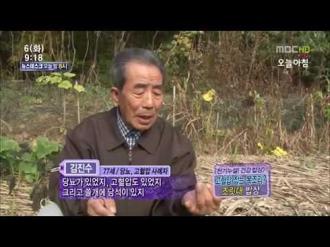 조릿대(山竹)효능 : MBC 생방송 오늘아침 - YouTube