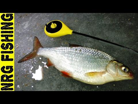 Платная рыбалка в Подмосковье с проживанием. Рыбалка зимой