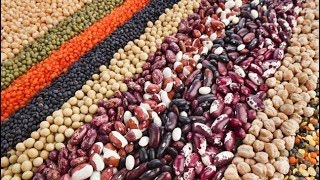 видео Пищевая ценность бобов