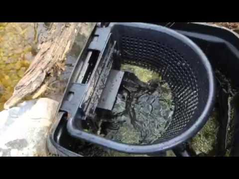 How A Aquascape Pond Skimmer Filter Works.