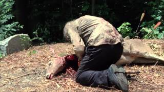 The Walking Dead - Tell It To The Frogs