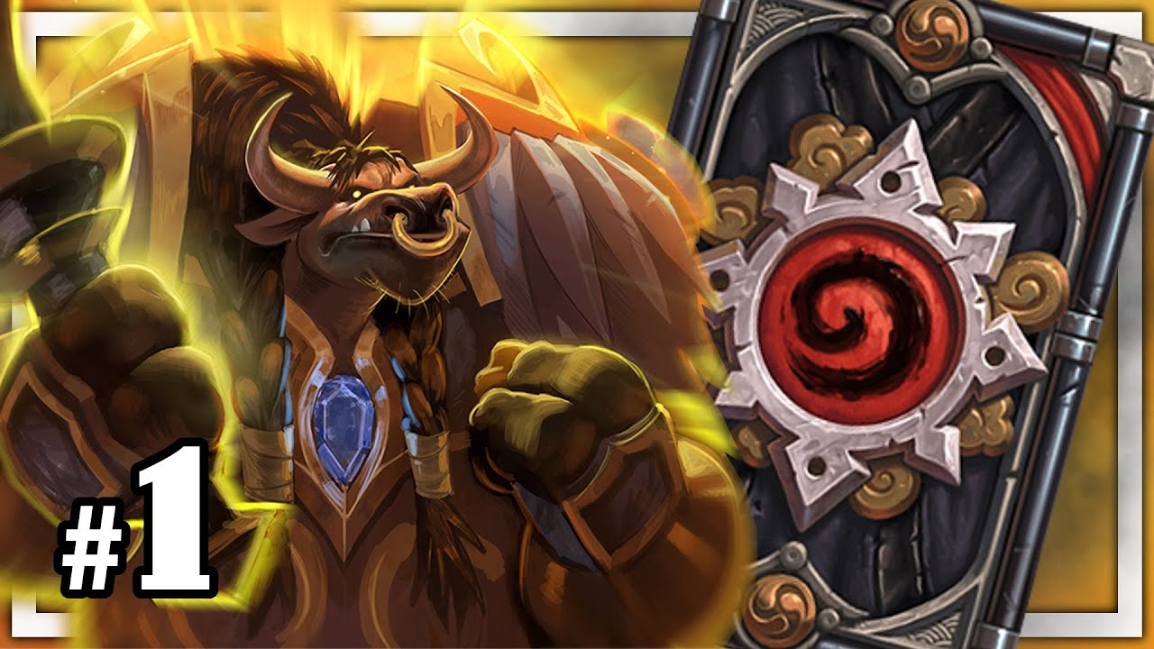 hearthstone how to play dude paladin
