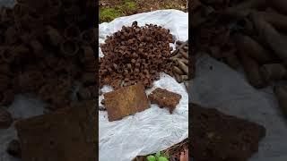 WW2 Müll im Wald ausgegraben.