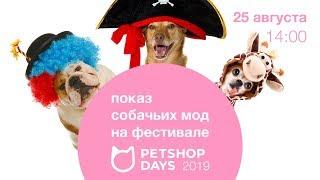 Показ собачьих мод на фестивале Petshop Days 2019