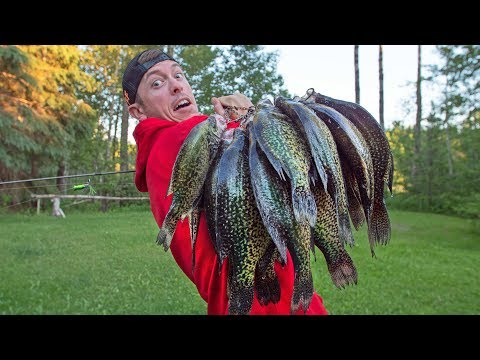 GIANT Black CRAPPIE Catch & Cook
